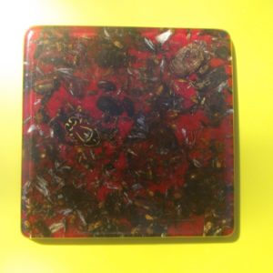 Coaster - Bugs - Square Resin